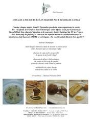 menu gala edo