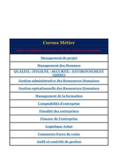 Fichier PDF cursus metier p p