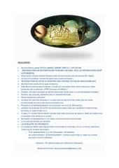 Fichier PDF regle dark