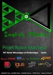 Fichier PDF rapport robot final