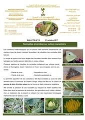 Fichier PDF 15 17 noctuelles chenilles sur culture maraichere
