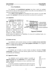 les Plathelminthes.pdf - page 2/7