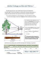 Fichier PDF atelier cubage au bois de l heras