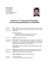 Fichier PDF mg cv docx