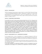 Fichier PDF reglement jeu concours facebook 2017