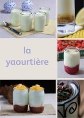 c la yaourtiere seb