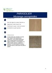 Fichier PDF musanga cecropioides