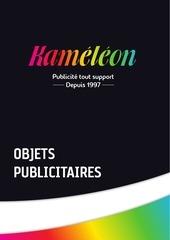 kameleon catalogue objets pub web