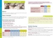 Fichier PDF fum poulet chair