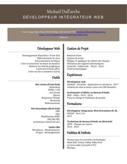 Fichier PDF mickael cv dev 27 11 2017