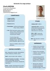 Fichier PDF cv charly medina 2
