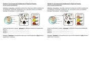 activite 12 les 3 niveaux de la biodiversite
