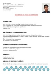 Fichier PDF cv nicolas dumercq