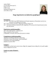 Fichier PDF cv perez