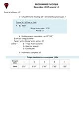 Fichier PDF physique fetes noel