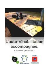Fichier PDF ara l auto rehabilitation accompagnee
