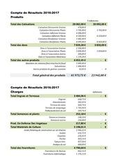 compte de resultats exercice 2016 2017