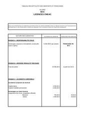 tableau garanties licence cneac