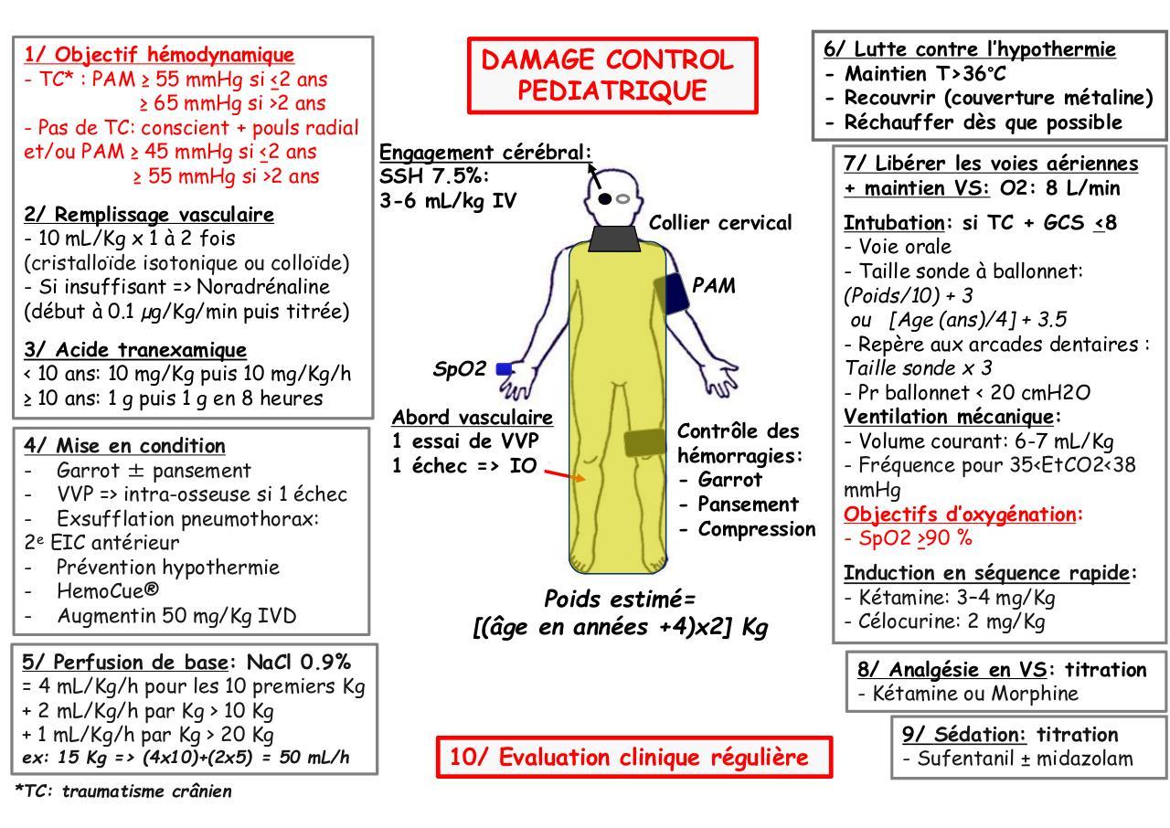 kb pediatrie pdf