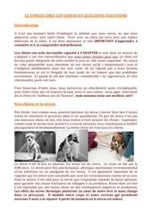 effet du stress chez le chien