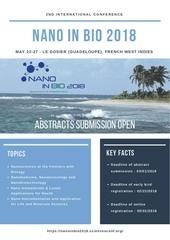 nano flyer a4