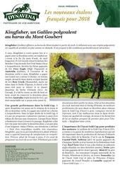 kingfisher jdg 20180111