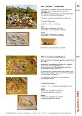 Fichier PDF modelbau luft n