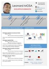 mosa leonard cv developpeur informatique