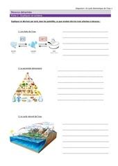 Fichier PDF fiche 2