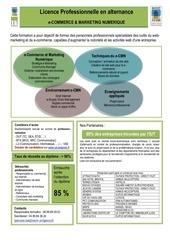 v5 plaquette synthetique lp ecmn