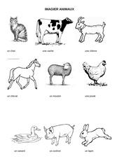 Fichier PDF imagier animaux