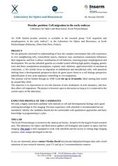 Fichier PDF postdoc