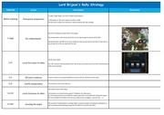 Fichier PDF brijean rally strategy 1