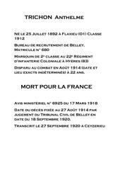 Fichier PDF 008 trichon anthelme