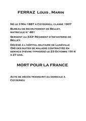 Fichier PDF 018 ferraz louis 1