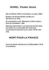Fichier PDF 056 morel pierre