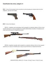 Fichier PDF classement armes