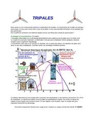 Fichier PDF construire une eolienne tripale