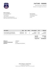 facture 1000006 brink s marguaz 120 045 00 eur