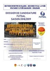 dossier de candidature 2018 2019 ss vg garcon futsal