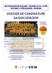 dossier de candidature 2018 2019 ss voltaire gauguin garcon 1