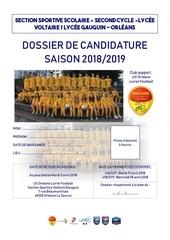 dossier de candidature 2018 2019 ss voltaire gauguin garcon