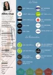 Fichier PDF cv zineb amiali fond bleu