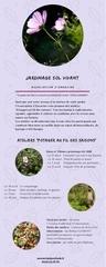 Fichier PDF jardinage sol vivant