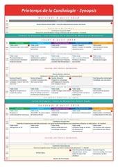 Fichier PDF synopsis