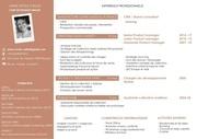 Fichier PDF cv 2018 acc bdef