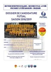 dossier de candidature 2018 2019 ss vg futsal g