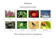 carte nomenclature printemps