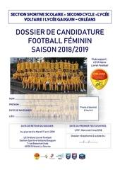 dossier de candidature 2018 2019 ss voltaire gauguin fille