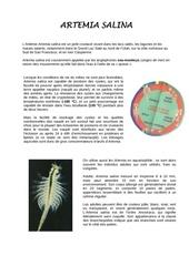 exposition environnement artemia salina 1